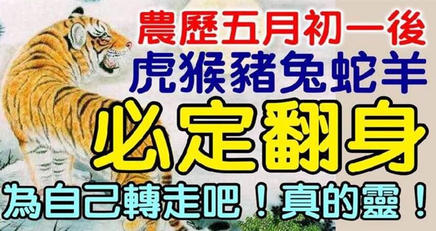 農曆五月初一後,虎猴豬兔蛇羊必定翻身,為自己轉走吧